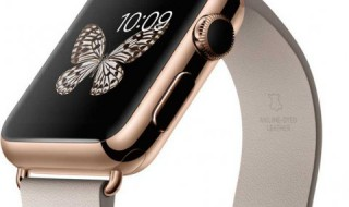 Apple Watch Edition (Bildquelle: Apple Produktbild)