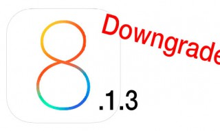 downios8 (iOS 8 Logo: © Apple)