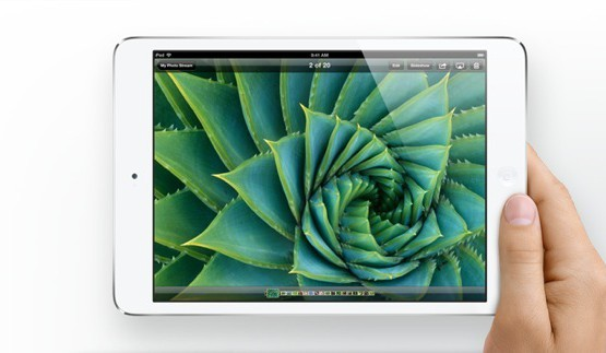 iPad-mini-landscape-in-hand-display