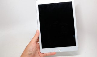 tinthe-ipad-air2